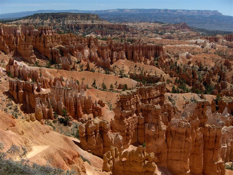 USA Parchi dell'ovest, Parchi americani, Bryce Canyon National Park, Particolare del Sunset Point